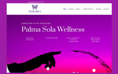 Introducing the New Palma Sola Wellness Logo & Website!
